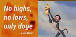 How high will Doge rise?