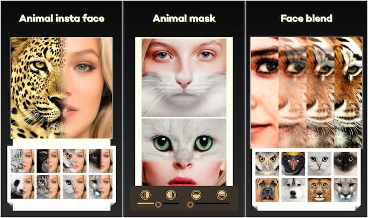 Beauty Face Plus: Face Morphing on Play Store