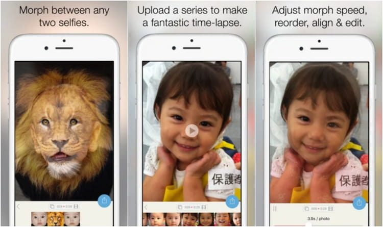 Morphy: Face Morph GIF on Play Store